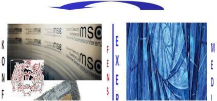 msc-ex